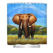 My Mountain Shower Curtain