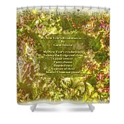 My New Year's Resolution Is . . . Poem And Image Shower Curtain