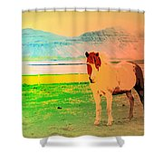 An Old Icelandic Mare, What Is Going On Inside Of Her  Shower Curtain