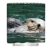 My Otter II Shower Curtain