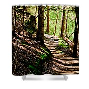My Path Shower Curtain