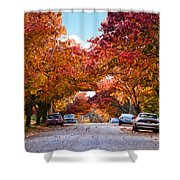 My Way Home.... Shower Curtain