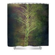 Mysterious Tree In Moonlight Shower Curtain