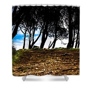 Mystery Of The Forest Shower Curtain