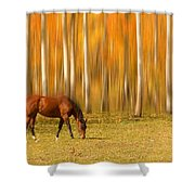 Mystic Autumn Grazing Horse Shower Curtain