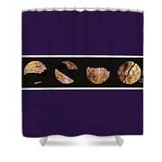 Mystic Fractures Iv Shower Curtain