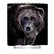Mystical Bear Shower Curtain