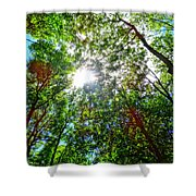Mystical Forest Sky Shower Curtain