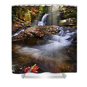 Mystical Pool Shower Curtain by Debra and Dave Vanderlaan