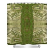 Mystical Stone Statues Shower Curtain
