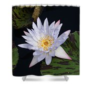 Mystical White... Shower Curtain