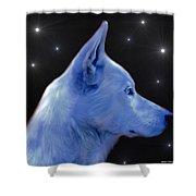 Mystical Wolf Shower Curtain