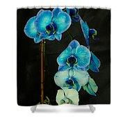 Mystique Blue Orchids Shower Curtain