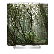 Mythical Place Shower Curtain