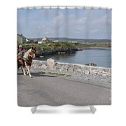 Na Hiostain Inis Mor Shower Curtain