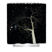 Naked Ambition Shower Curtain