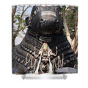 Nandi Statue Shower Curtain