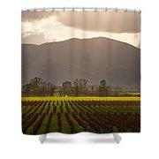 Napa Beauty Shower Curtain
