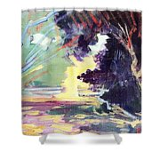 Napa Valley Forest Fall Shower Curtain
