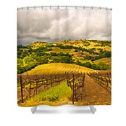 Napa Vineyard Shower Curtain