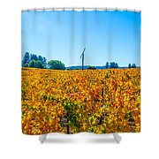 Napa Wine Capital Shower Curtain