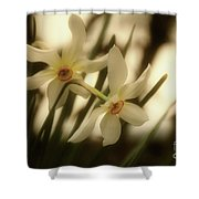 Narcisi Shower Curtain