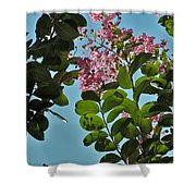 Nashville Flowers Shower Curtain