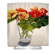 Nasturtiums Shower Curtain