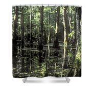 Natchez Trace Cypress Shower Curtain