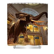 National Museum Of Natural History Shower Curtain