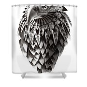Native American Shaman Eagle Shower Curtain