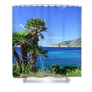 Native Fan Palms In Sant Elm Shower Curtain