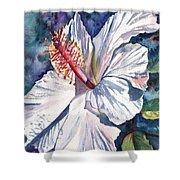 Native Hawaiian Hibiscus Shower Curtain