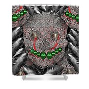 Native Indian Skull Art Shower Curtain