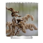 Natural Abstract 48 Shower Curtain