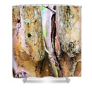 Natural Abstract Crepe Mertle Shower Curtain