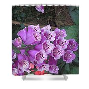 Natural Bouquet Bunch Of Spiritul Purple Flowers Shower Curtain