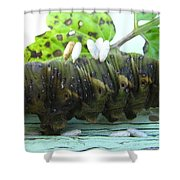 Natural Causes Shower Curtain