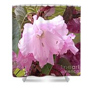 Natural Floral Beauty Shower Curtain