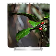 Natural Holly Decor Shower Curtain
