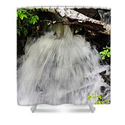 Natural Love Shower Curtain