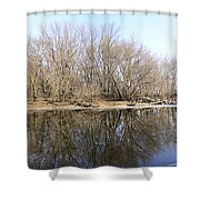 Natural Mirror Shower Curtain
