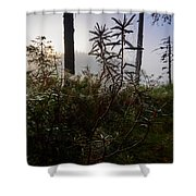 Natural Network Shower Curtain