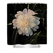 Natural Peony Shower Curtain