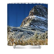 Natural Picture Frame Shower Curtain