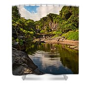 Natural Pool - The Beautiful Scene Of The Seven Sacred Pools Of Maui. Shower Curtain