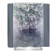 Natural Reflections Shower Curtain