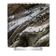 Natural Rock Art Shower Curtain