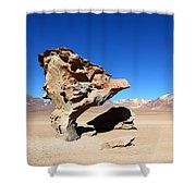 Natural Rock Sculpture Shower Curtain