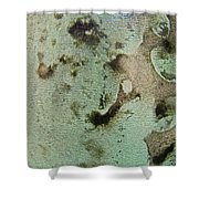 Natural Sea Colors Shower Curtain